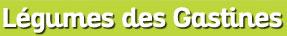 logo, Légumes des Gastines, Saint-Père, Saint Malo, Sébastien Le Jolivet, Guénola Le Jolivet, producteur, maraicher, maraichage, petit producteur, local