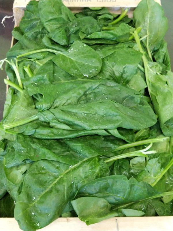 epinards-legumes-des-gatines
